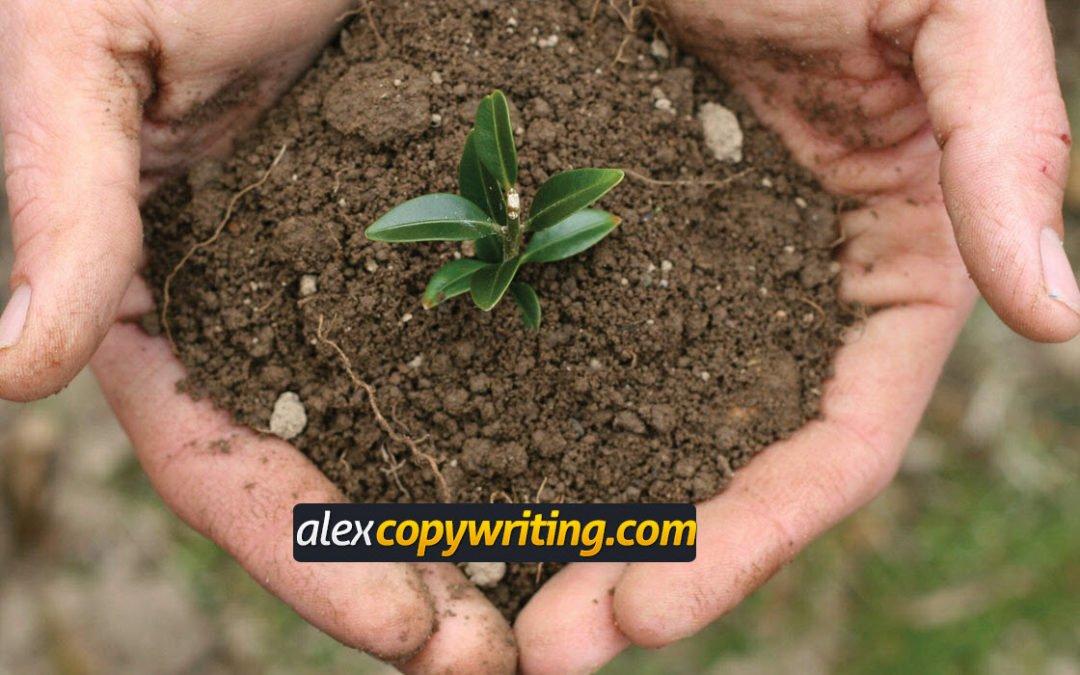 ♻ ¿Qué es la Ecología del Marketing Online?